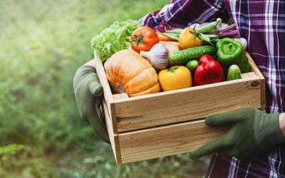 The Health and Environmental Benefits Of Eating Locally-Sourced Foods